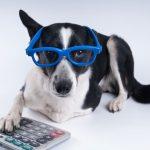Enzo Paredes' Under-Utilized Pet Tax Deductions